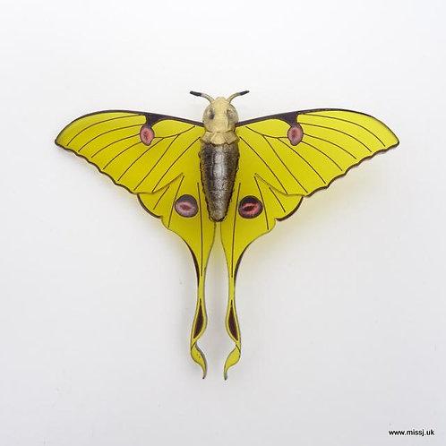 Luna Moth Saffron Yellow Brooch by MissJ Designs   Butterfly