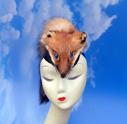 Taxidermy Fox Headpiece (1)