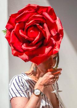 Red Rose worn by Gastronomista