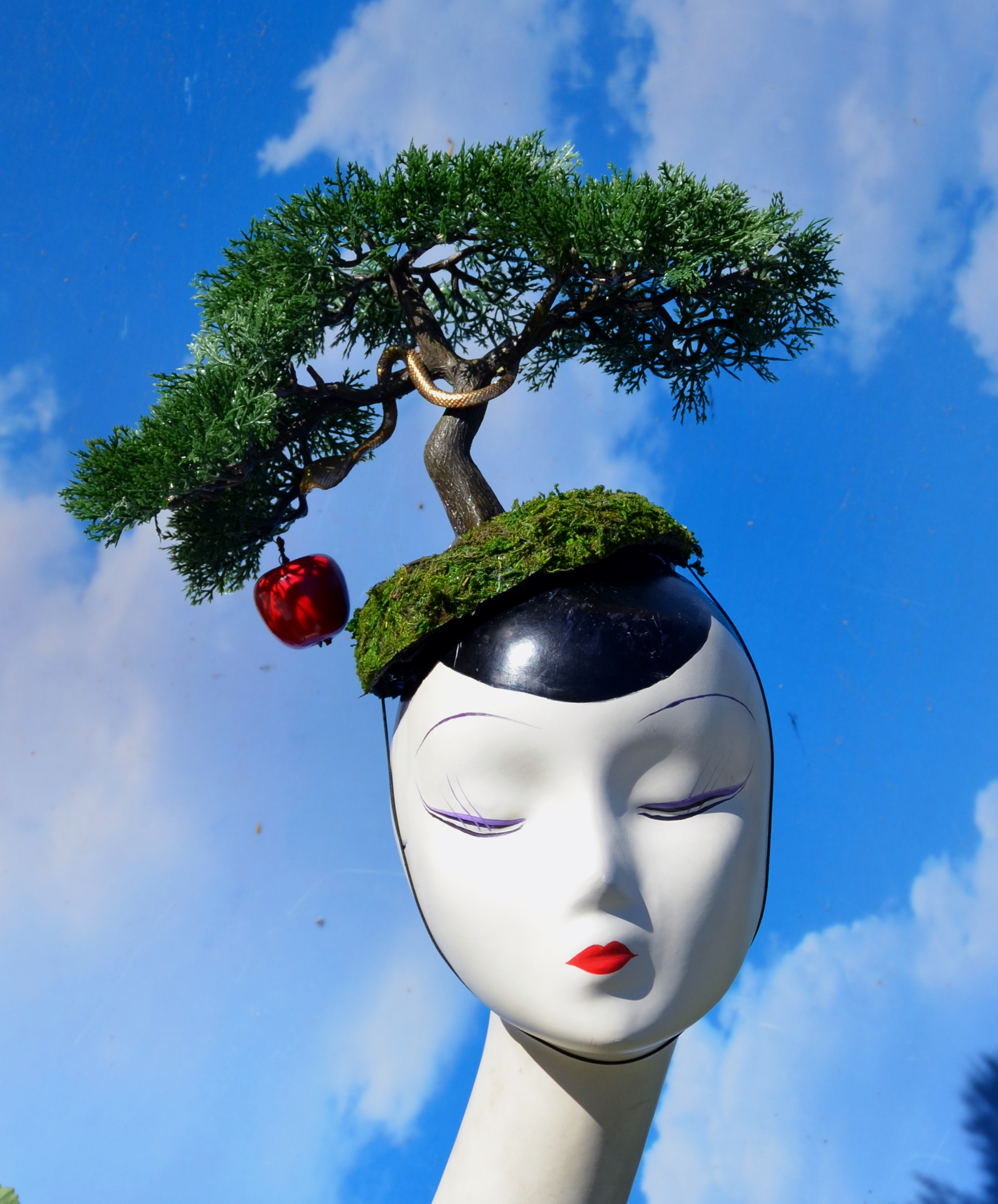 Surrealist Bonsai Hat with Moss