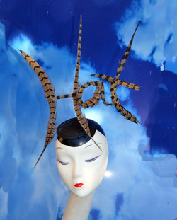Hat Feather Hat