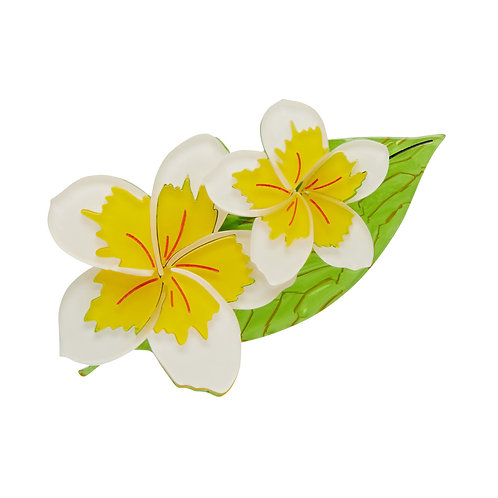 Lei it On Me Brooch by Erstwilder | White Yellow Tropical Flowers