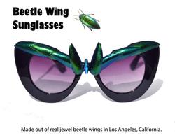 Fab Hatters Jewel Beetle Sunglasses