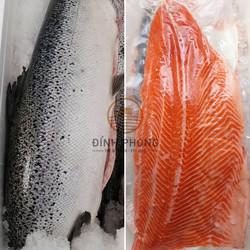 Cá hồi tươi Na-uy (size 6-7kg/con)