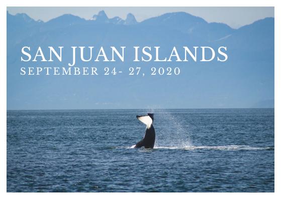 Exploration Of The Islands- San Juan