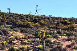 Cameras in the Desert