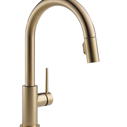 Trinsic Kitchen Faucet in Champagne Bronze