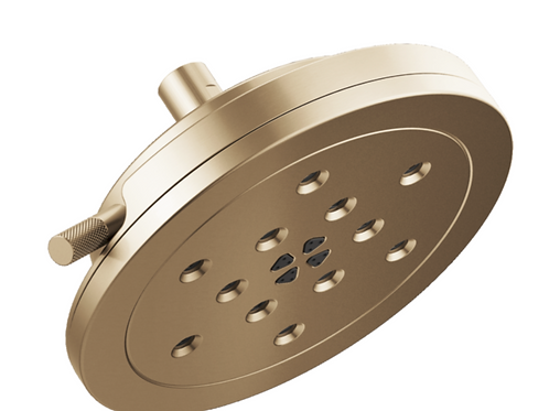 Round Multifinction Showerhead Luxe Gold