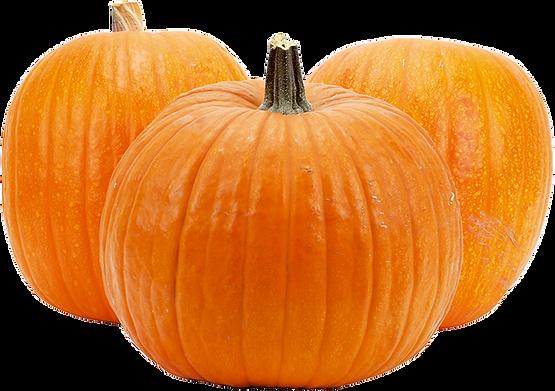 Pumpkins_2.png