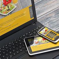 Website Design/Hosting