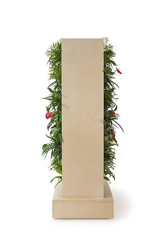 Greenful Divider Double
