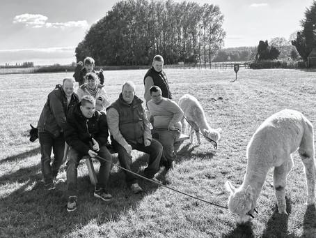 Bezoekje aan alpaca-world