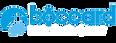 Boccard-HoloTech MOG.png