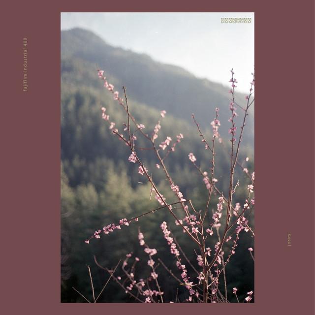 Film posts10.jpg