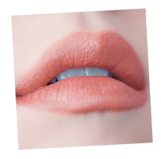 Web-Young-afternoon_Lip407.png