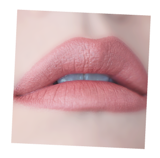 Web-Young-afternoon_Lip408.png