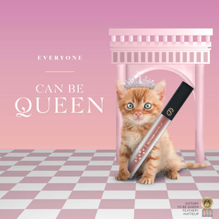 Sixtory to be queen Kitten