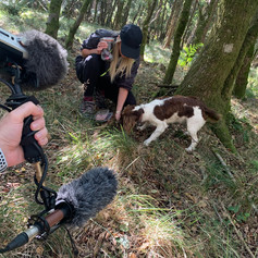 Monster in the making - Forest of Dean location recordings.