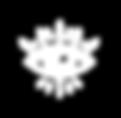 NEW logo oeil_TRANS BLANC 300PP-01.png