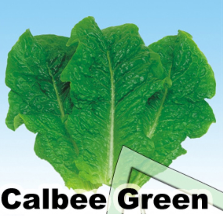 calbee green