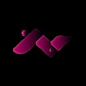 VIP ACCESS Logo-2.png