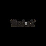 Visalock Logo.png
