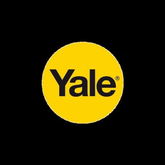 Logo Yale-4.png