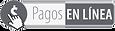 Pagos En Línea_edited.png