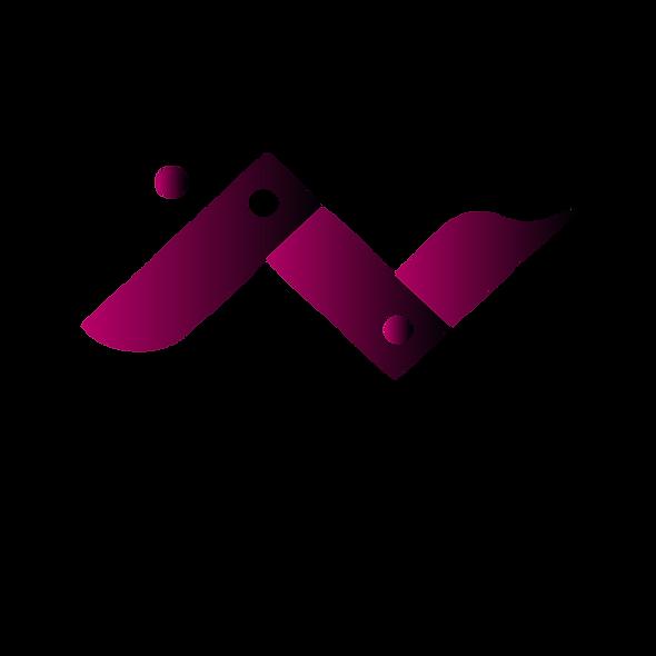 VIP-PC-A Plataforma de Control de Acceso Centralizada