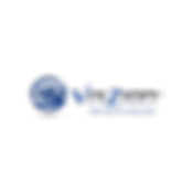 VIXZION Logo.png
