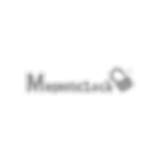 Logo Magneticlock-3.png
