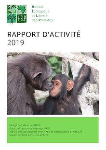 rapport activite