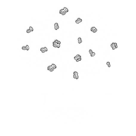 SouthernRootswhitehighres.png