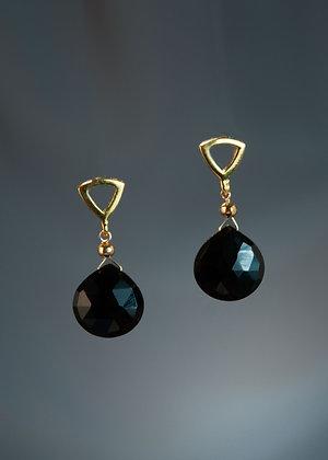 E05328 Black Onyx Earrings
