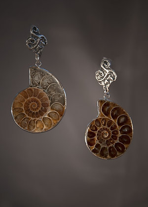 E29406 Ammonite Earrings
