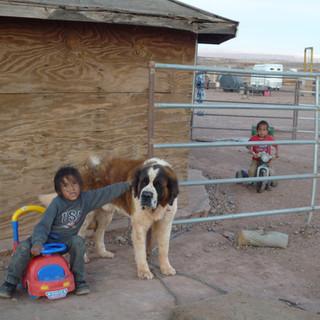 Tribal Heating Assistance_ AZ.JPG