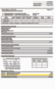 Website NYSEG Bill_3.jpg