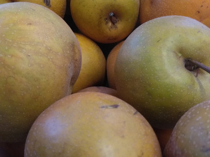 Local Produce in November