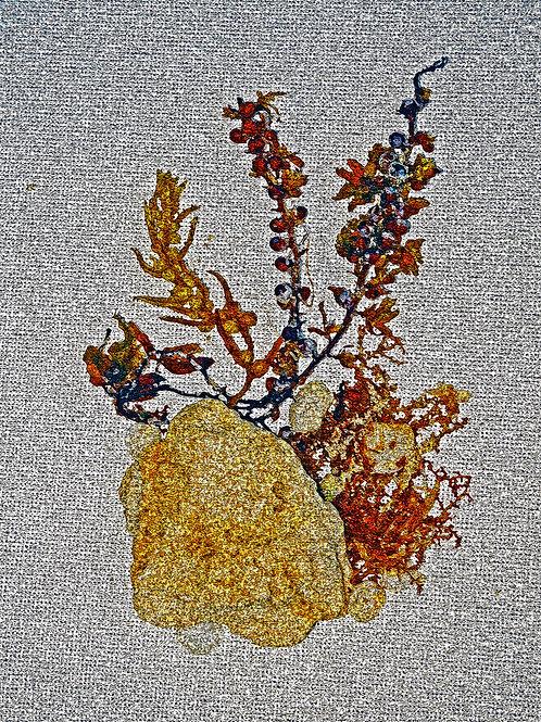 Sea Weed Digital Art#2