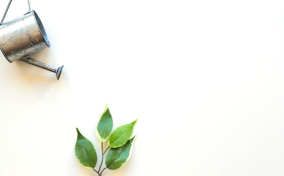 watering-pot-green-leaf_edited_edited_ed