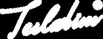 LogoTeslabimW2100x800-300.png