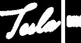Logo_TeslaBIM_W.png