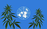 The passage of Recommendation 5.1 carries broad symbolic significance for medical cannabis, as it could help boost medical cannabis legalization efforts around the globe...