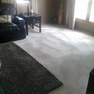Restores Carpets Back To Like-New Appearance