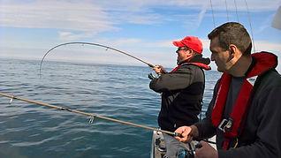 combat poisson bretagne, guide de peche brest, peche finistere , brest, finistere, bretagne