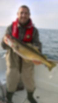 lieu jaune en mer d'iroise, guide de peche brest, peche finistere , brest, finistere, bretagne