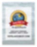 2020BOLR_VoteFlyer (1).jpg
