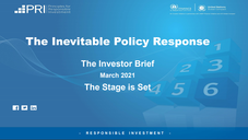 The Inevitable Policy Response: Investor Brief
