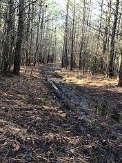 4 Wheeler Tracks