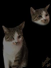 80s Pet Portrait